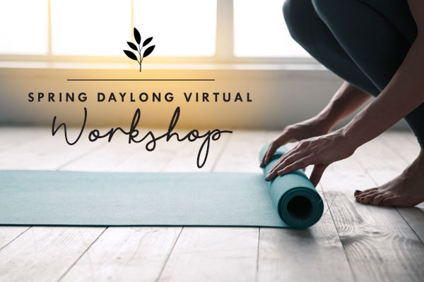 spring daylong virtual workshop