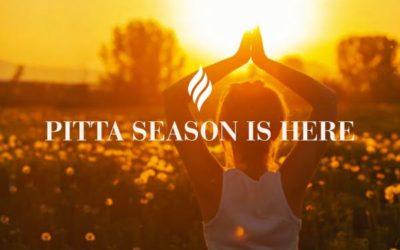 Pitta Season is Here