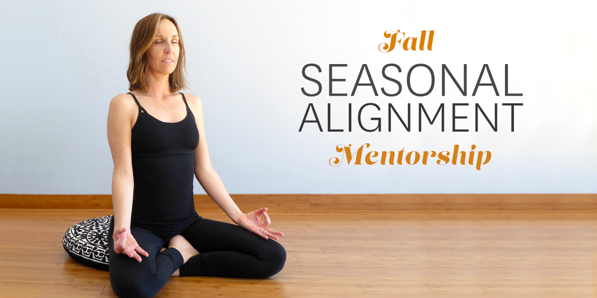Fall Seasonal Alignment Mentorship